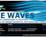 Sea Shepherd – Make Waves
